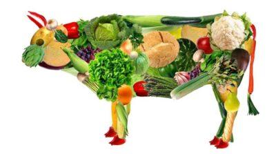 Овощная замена мяса